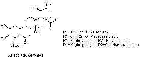 мадекассосид молекула