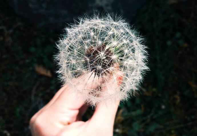 добавки при аллергии