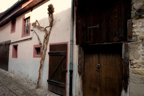 Eguisheim 10