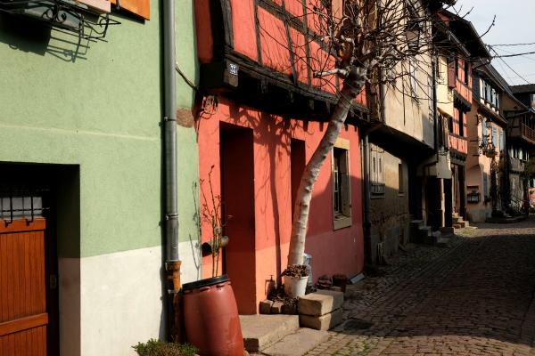 Eguisheim 19