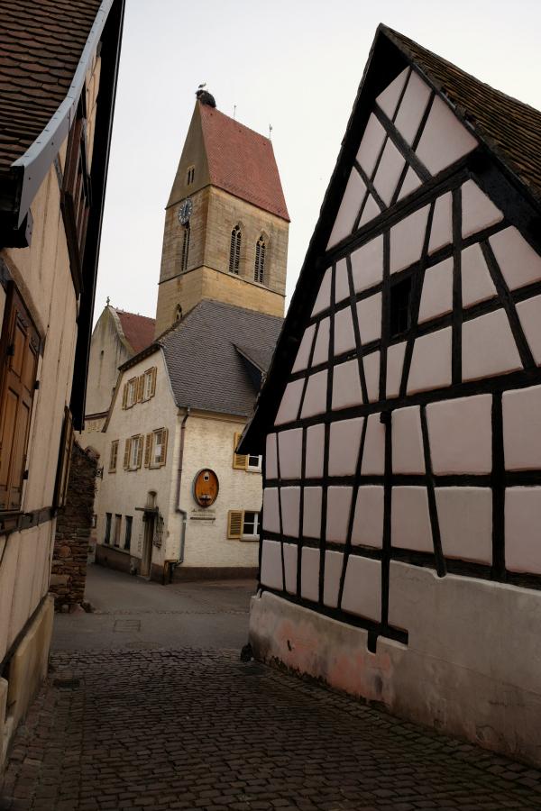 Eguisheim 40