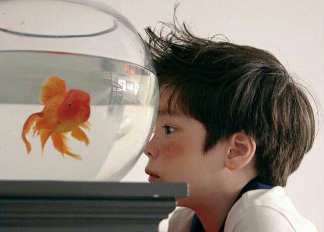 дозировка витамина с для детей при простуде