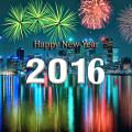 С Новым годом Обезьяны 2016!