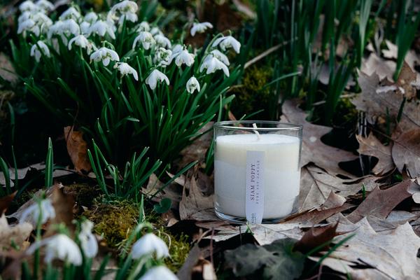 Ароматические свечи с аромат смородины