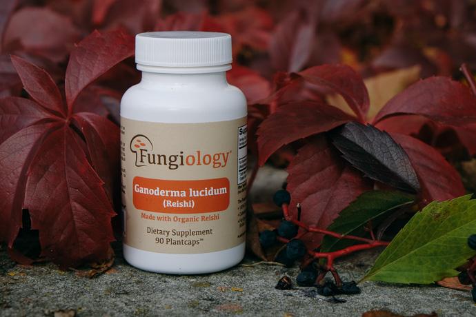 экстракт рейши iherb fungiology reishi